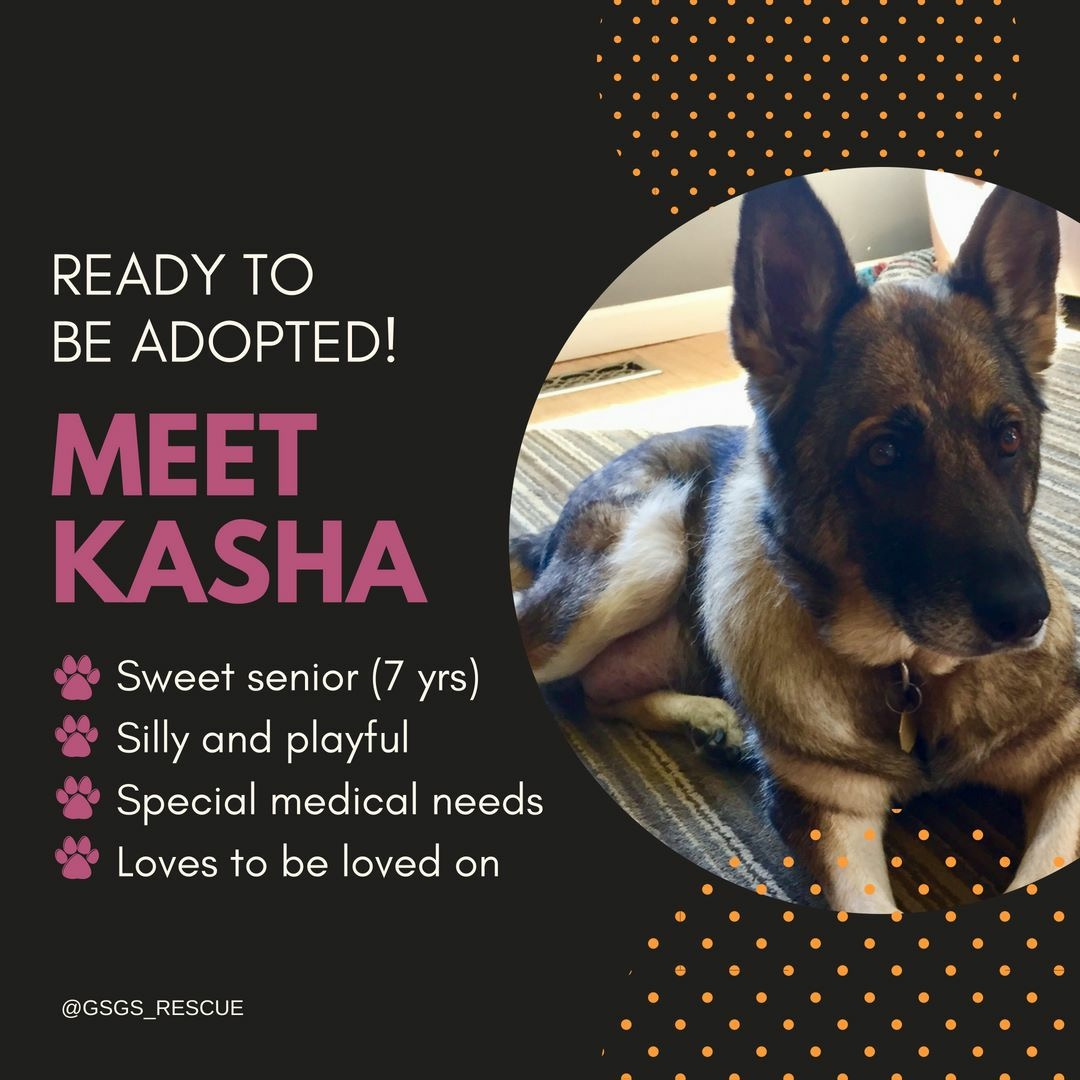 Kasha - Schulyer