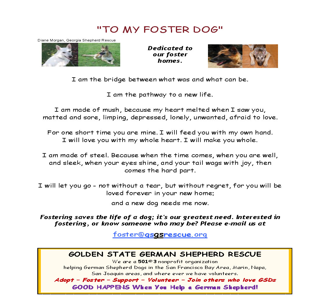 'To My Foster Dog' flier