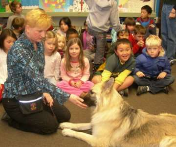 GSD laying in front of children